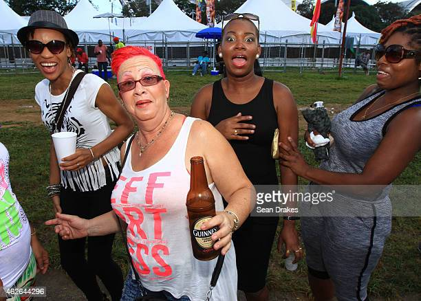 Steelpan fans at the National Panorama Semi-Finals in the Queens Park Savannah as part of Trinidad and Tobago Carnival on February 1, 2015 in Port of...