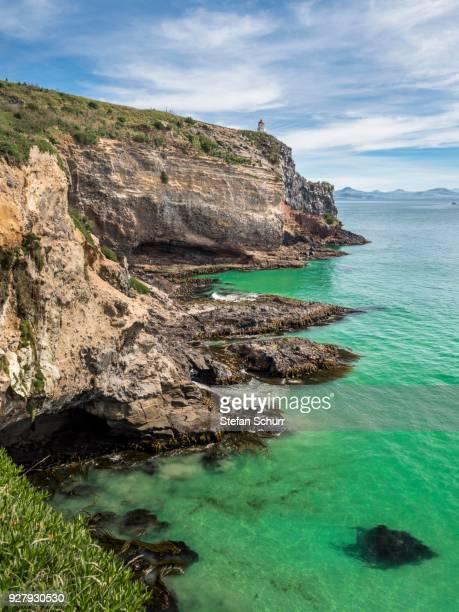 steep coast otago peninsula, dunedin, otago region, south island, new zealand - dunedin new zealand stock pictures, royalty-free photos & images