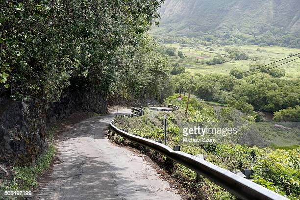 steep mountain road with a 25% slope, waipio valley, big island, hawaii, usa - waipio valley stockfoto's en -beelden
