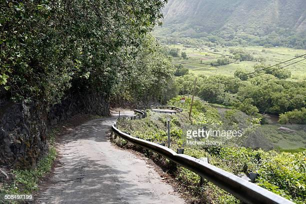 Steep mountain road with a 25% slope, Waipio Valley, Big Island, Hawaii, USA