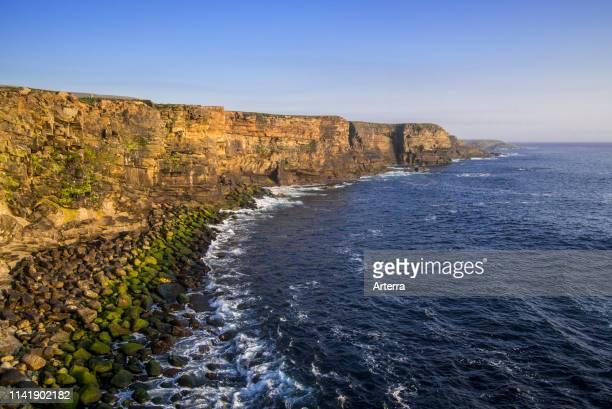 Steep sea cliffs near Sandness headland west of Mainland Shetland Islands Scotland UK