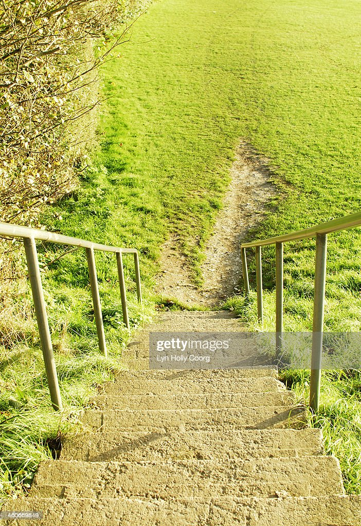 Steep steps leading to worn grass : Stock Photo