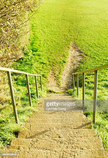 steep steps leading to worn grass - lyn holly coorg stock-fotos und bilder