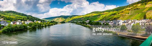 steep vineyard along mosel river in germany - moselle stock pictures, royalty-free photos & images