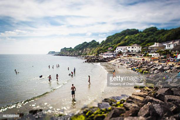 steephill cove beach, isle of wight south of uk - isle of wight stock pictures, royalty-free photos & images