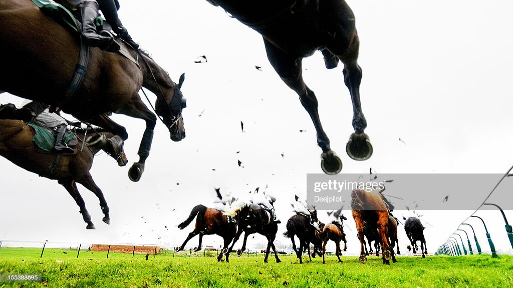 Steeplechase Jump and Horse Racing : Stock Photo