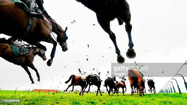 steeplechase jump and horse racing - horse racing stock pictures, royalty-free photos & images