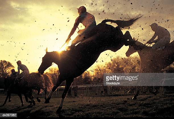 steeplechase - horse racing stock pictures, royalty-free photos & images