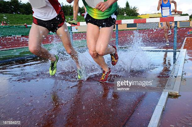 steeplechase race - steeplechase track event stock pictures, royalty-free photos & images