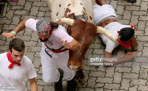 A steer from the Ranch of Torrestrella runs above a runner entering the bullring during the second day of the San Fermin Running Of The Bulls...