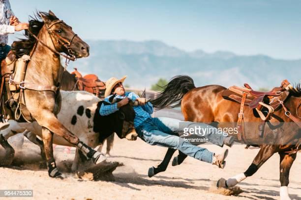 steer luta - estadio de los cowboys - fotografias e filmes do acervo