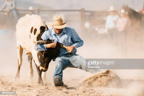 sturen worstelen - cowboy stockfoto's en -beelden