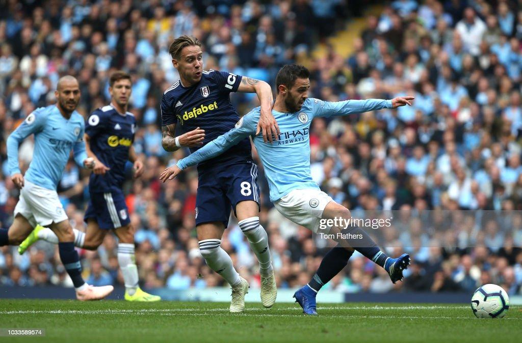 Manchester City v Fulham FC - Premier League : News Photo