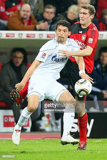Stefan Reinartz of Leverkusen challenges Kevin Kuranyi of Schalke during the Bundesliga match between Bayer Leverkusen and FC Schalke 04 at the...