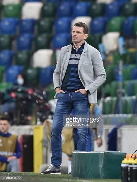 Stefan Tarkovic Head Coach of Slovakia looks on during the UEFA EURO 2020 Play-Off Final between Northern Ireland and Slovakia at Windsor Park on...