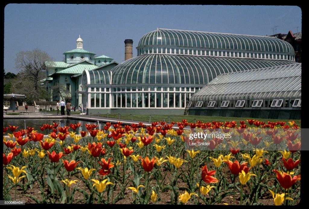 Steinhardt Conservatory At Brooklyn Botanical Garden High Res