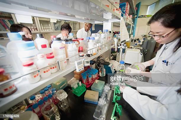 Stem cell laboratory in Severance Hospital of Yonsei University.
