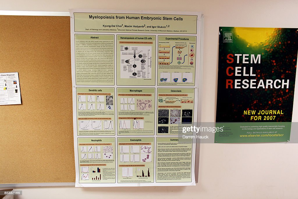 Stem Cell Posters adorn the wall at the Wisconsin National Primate Research Center at University Wisconsin-Madison March 10, 2009 in Madison, Wisconsin. On March 9, 2009 President Barack Obama signed an order reversing the Bush administration's limits on human embryonic stem cell research. Scientists at the University Wisconsin-Madison, who were the first to experiment in finding cures to neurological and muscular diseases through stem cell research, are now hoping to receive federal funding to aid in their work.