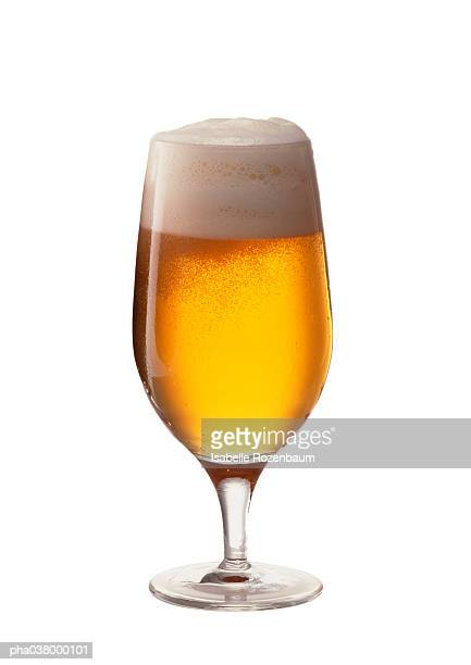 Stemmed glass containing beer and foam, full length, white background