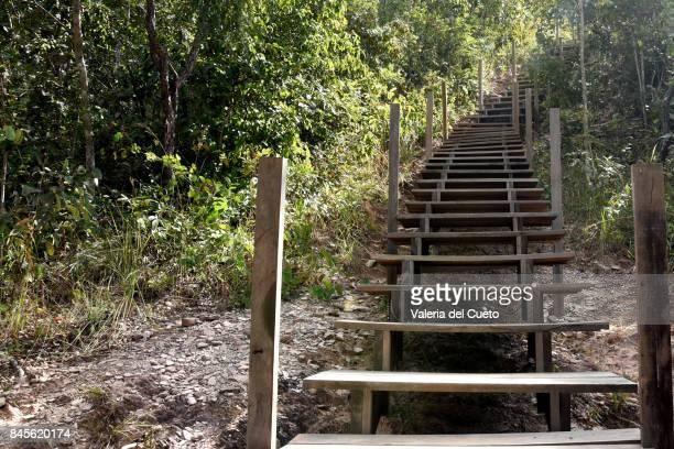 Step by step to Paciencia River