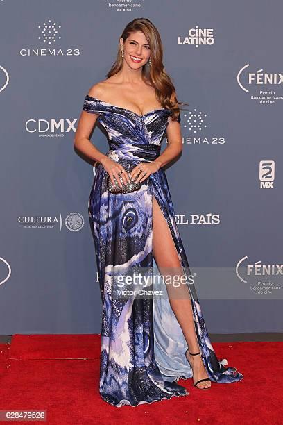 Stephanie Cayo attends the Premio Iberoamericano De Cine Fenix 2016 at Teatro de La Ciudad on December 7 2016 in Mexico City Mexico