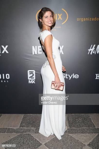 Stephanie Cayo attends the Premio Iberoamericano De Cine Fenix 2017 press room at Teatro de La Ciudad on December 6 2017 in Mexico City Mexico