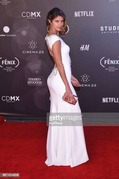 Stephanie Cayo is seen arriving at red carpet of Fenix Film Awards on December 06 2017 in México City Mexico