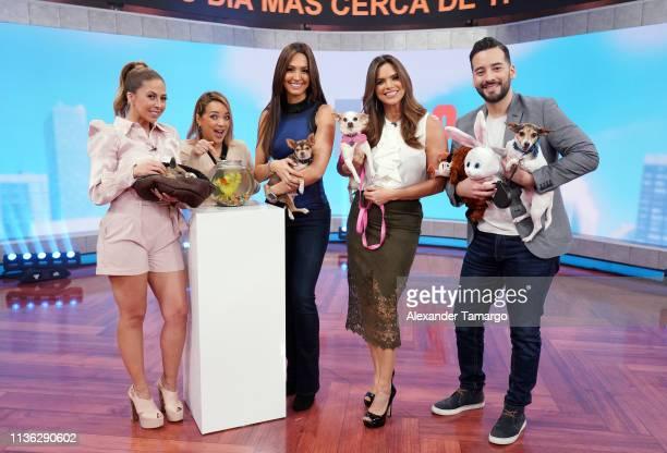 Stephanie Himonidis Adamari Lopez Erika Csizer Rashel Diaz and Francisco Caceres are seen as Telemundo celebrates National Pet Day in support of the...