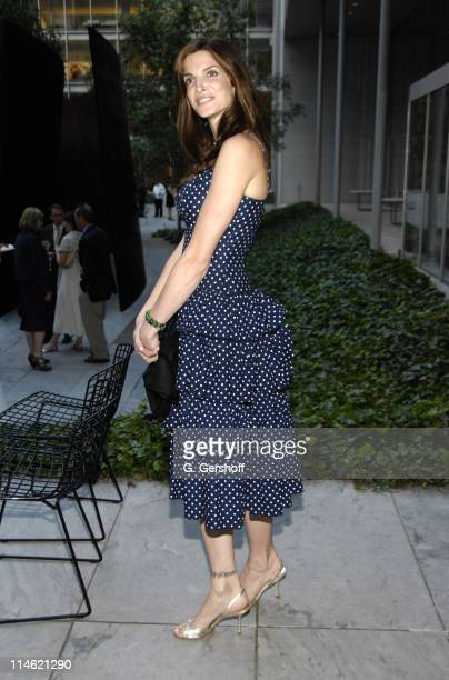 Stephanie Seymour during MoMA Celebrates Opening of Richard Serra Sculpture Forty Years at The Museum of Modern Art in New York City New York United...