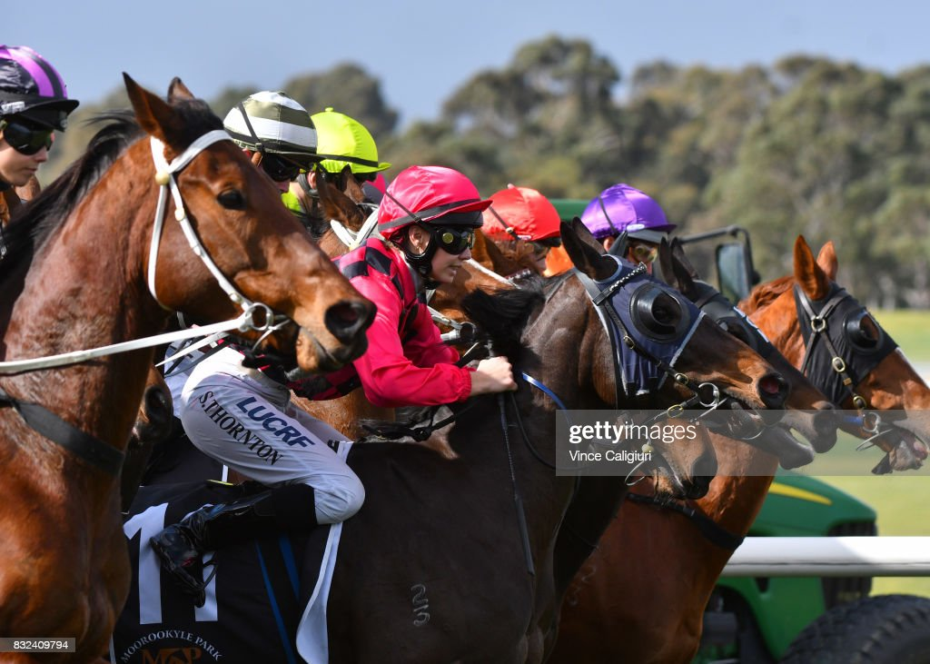 Stephanie Thornton riding Testa Life during unplaced finish in Race 5 during Melbourne Racing at Sandown Lakeside on August 16, 2017 in Melbourne, Australia.