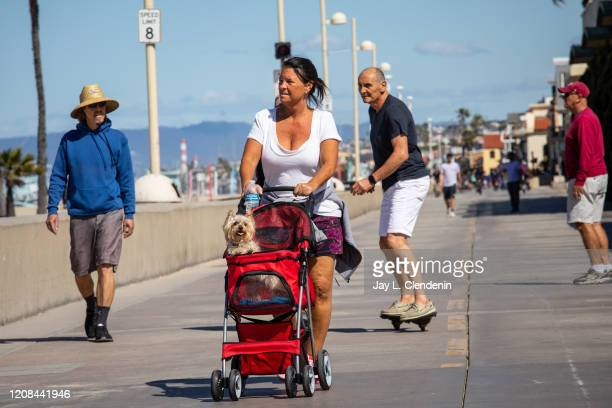Stephanie Van Sickle, of Hermosa Beach, pushes her Yorkie, Sophie in a stroller because of the dogs bad back, along The Strand of Hermosa Beach, CA,...