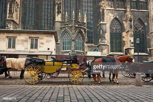 stephansdom-horse-drawn carriage traditionellen fiaker, wien, österreich - pferdeantrieb stock-fotos und bilder