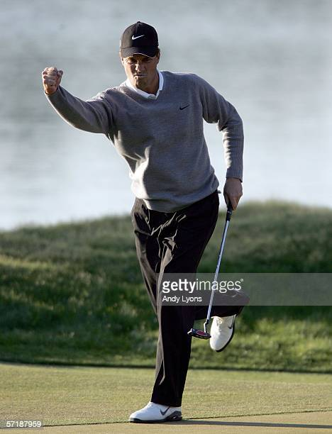 Stephen Ames of Canada reacts to making a eagle putt on the par 5 16th hole during the final round of The Players Championship on March 26 2006 at...
