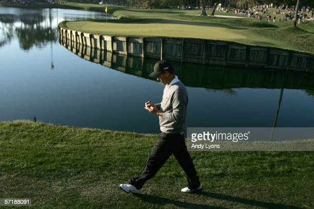 Stephen Ames of Canada walks to the 17th hole after making an eagle on the par 5 16th hole during the final round of The Players Championship on...