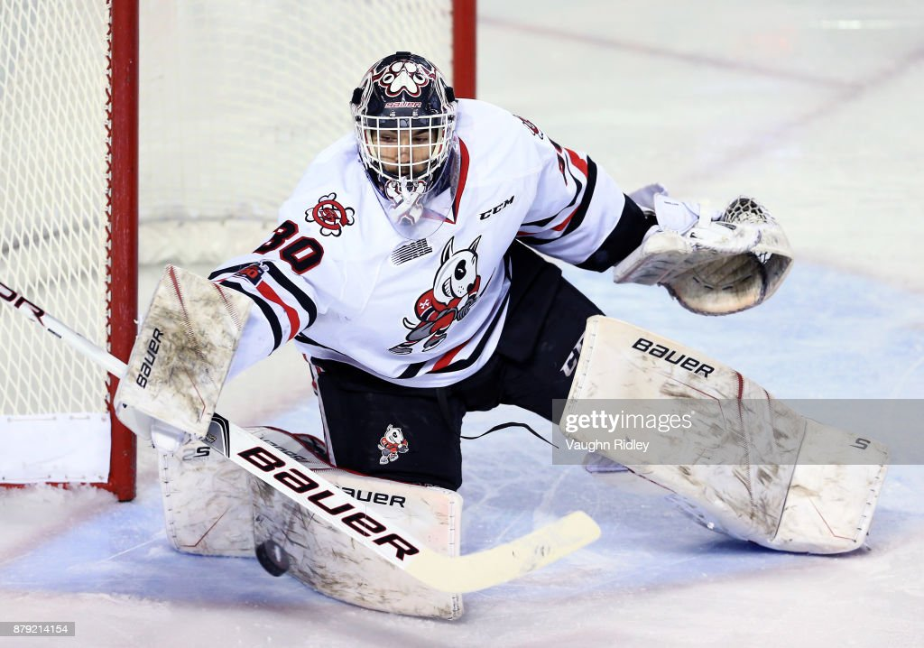 Stephen Dhillon #30 of the Niagara IceDogs makes a save during the second period of an OHL game against the Mississauga Steelheads at the Meridian Centre on November 25, 2017 in St Catharines, Ontario, Canada.