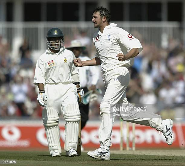 Stephen Harmison of England celebrates taking the wicket of Makahaya Ntini of South Africa after he was caught out by Ed Smith for one run during the...