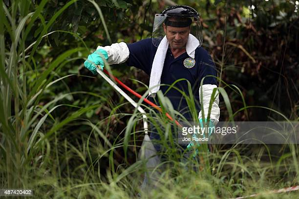 Stephen Jenner from the Florida Department of Agriculture and Consumer Services sprays an insecticide under an avocado tree where some Oriental fruit...