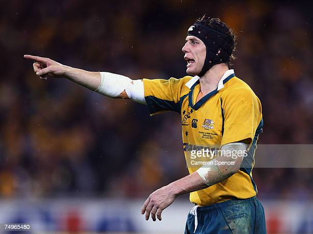 Stephen Larkham of the Wallabies talks to team mates during the 2007 Tri Nations match between Australia and New Zealand at the Melbourne Cricket...