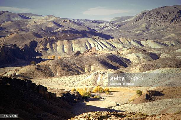 steppe in patagonia - radicella stock photos and pictures