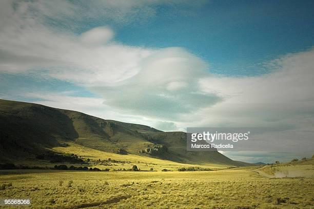 steppe in patagonia - radicella stockfoto's en -beelden