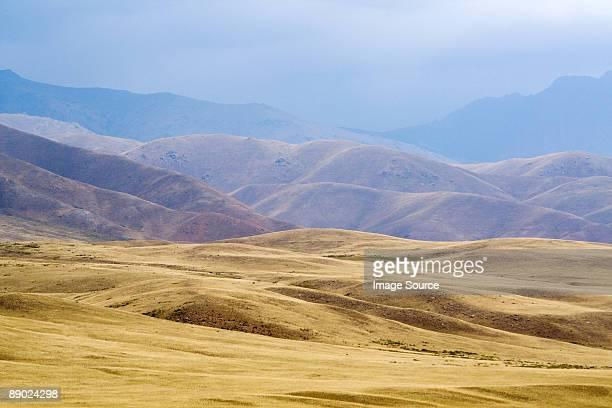 steppe landscape - kirgizië stockfoto's en -beelden