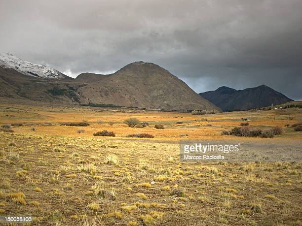steppe patagonia argentina - radicella stock photos and pictures
