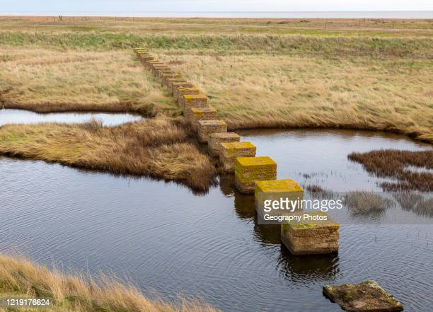 Stepping stones formed by second world war defenses near Shingle Street, North Sea coast, Suffolk, England, UK.