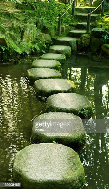 Stepping stones in a Japanese  garden in Kyoto