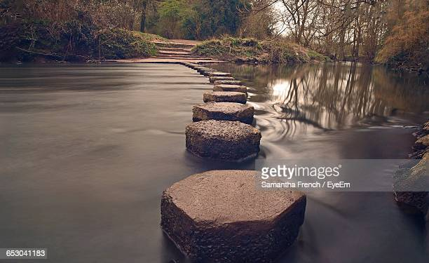Stepping Stones In River Against Trees