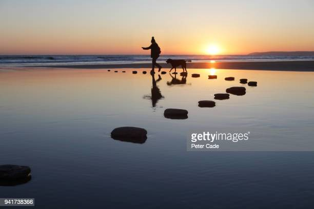 Stepping stones over water, person and dog
