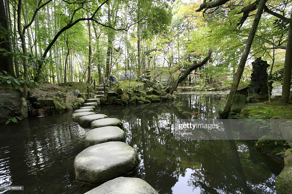 Stepping stones : Stock Photo