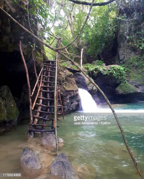 steps in river at forest - armamento stock photos and pictures
