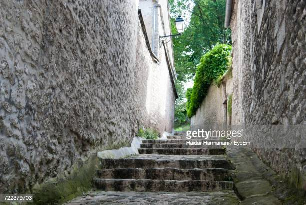 Steps Leading Towards Ivy