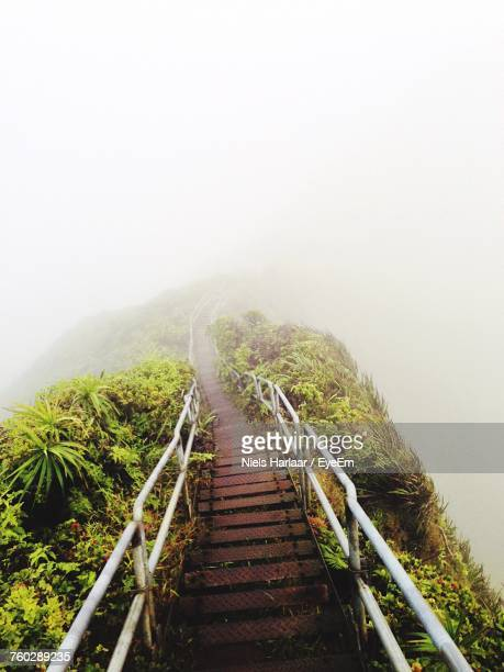 Steps Leading Towards Mountain In Foggy Weather
